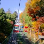 高尾山の紅葉2017年、見ごろの時期と混雑状況について