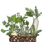 春の七草の覚え方を解説 「暗記しやすく、忘れにくいやり方があった」