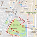 小田原城桜祭り2018の駐車場や屋台、見頃時期、ライトアップなどまとめ